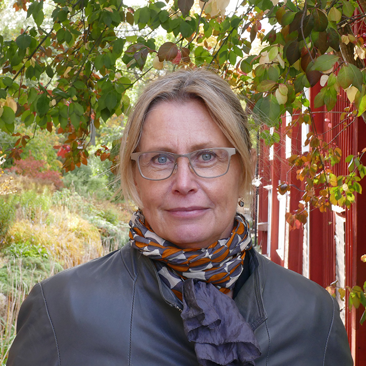 Karin Aggestam : Board member