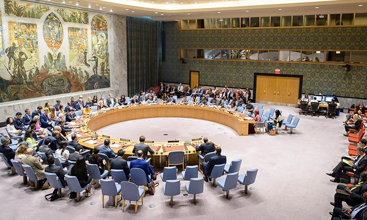 Security Council web